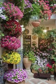 flower patio garden ideas garden