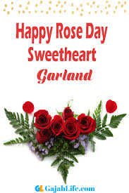 garland happy rose day images wishes messages status