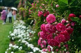 best public gardens in new england