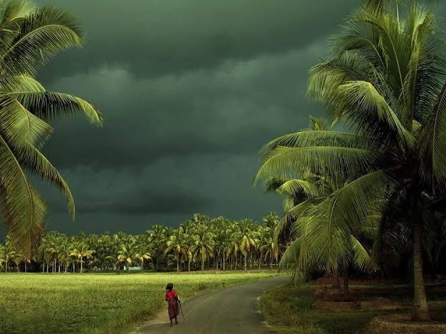 """Image result for rain in beautyfull village"""""""