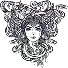 Amazon Com Pretty Medusa Goddess Drawing Vinyl Decal Sticker 4 Tall Arts Crafts Sewing