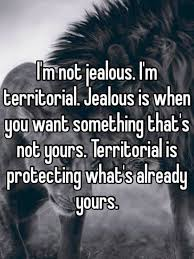 quotes about jealousy and envy and images the random vibez