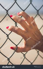 Womans Hand Clutching Wire Fence Her Stock Photo Edit Now 1522204169