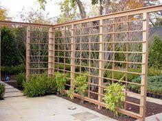 Grape Pergolas Privacy Fences And Lattice Fencing Gates Arbors Custom Pergolas Garden Vines Outdoor Gardens Urban Garden