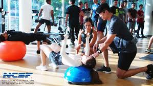 ncsf certified personal trainer course