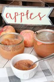 homemade applesauce slow cooker or