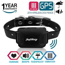 Best 8 Dog Shock Collar Fence Let Your Pet Play Freely In The Garden Pet Approves