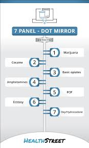 7 panel hair follicle test