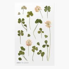 Appree Pressed Flower Sticker Four Leaf Clover Washiwednesday