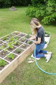 raised garden bed in 4 easy steps