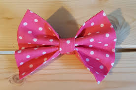 Image result for pink dickier bows