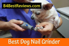 11 best dog nail grinders reviews