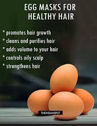 5 best egg hair treatments for hair