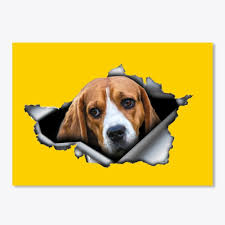 Best Beagle Car Stickers Products From Awesome Shirts Store Teespring