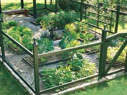 Grow A Healthy Vegetable Garden This Old House