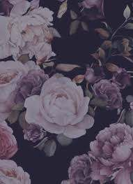 Online Premium Flowers Order   Myra Rose Atelier