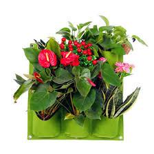 living wall plant grow bag as vertical