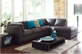 chocolate brown couches blue