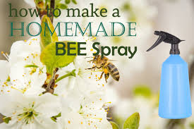 7 useful homemade wasp and bee spray