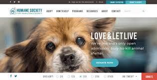 hamilton humane society web design
