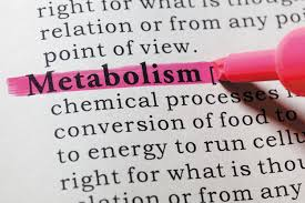 the truth about metabolism harvard health