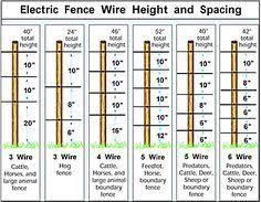Electric Fence For Pigs Electric Hog Fencing Zareba Deer Fence Pig Fence Electric Fence