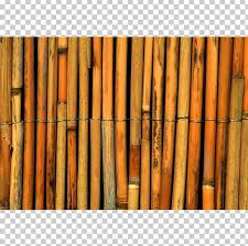 Tropical Woody Bamboos Paper Reed Fence Cane Png Clipart Bamboo Bauhaus Cane Curtain Fence Free Png