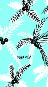 the pura vida bracelets digital
