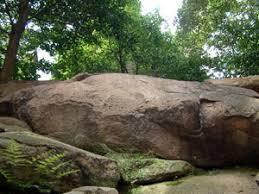 白神社の岩礁