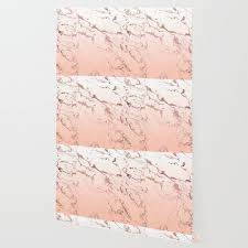 pink blush white ombre grant rose