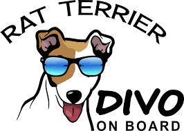 Diva Dog On Board Different Breeds Rat Terrier Car Window Bumper Funny Sticker Mc Artwork Decals