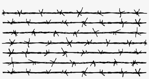 Barbed Wire Fence Download Barb Wire Fence Png Transparent 958x462 Png Download Pngkit