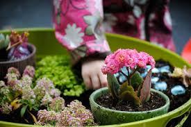 kids fairy garden work 3 bedner