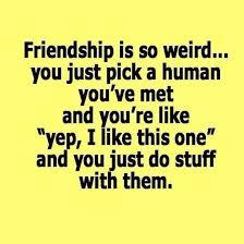friendship is so weird best friendship quotes best friend