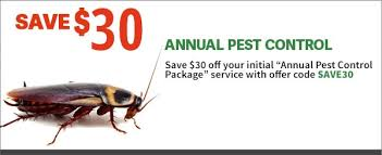 JD Smith Pest Extermination Service Specials - Servicing Citrus & Pinellas