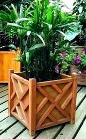 contemporary outdoor pots and planters