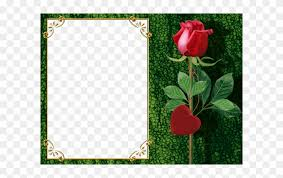 png photo frame with rose and heart