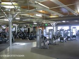 arizona new gym start up fitness