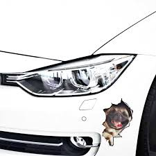 Aliauto Car Styling 3d Simulation Cute Dog Cat Car Sticker Decal For Motorcycle Laptop Smart Volkswagen Polo Golf Ford Focus Bmw Car Stickers Aliexpress