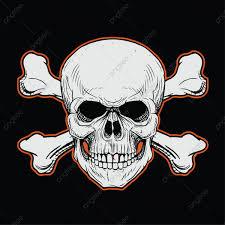 جمجمة الرأس مع عظمتان متقاطعتان في الخلفية السوداء علم التشريح