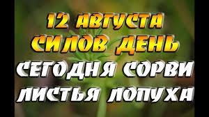 12 августа - народный праздник - Силов день / Сегодня обязательно ...