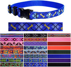 Amazon Com Lupine Replacement Pet Fence Collar Strap 3 4 Wide For Invisible Fence Microlite Dapper Dog Pet Supplies