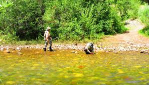 Fishing the Dolores and West Fork Rivers