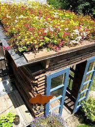 green roof inspiration garden design