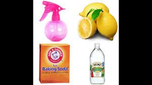homemade lemon vinegar cleaner you