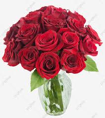 وردة حمراء ذات ساق طويل ورود حمراء Bunga Mawar Png وملف Psd