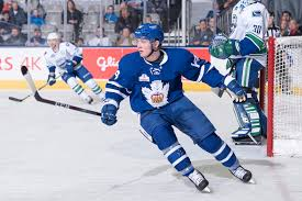 Toronto Maple Leafs sign Adam Brooks to a two-year, two-way contract |  Maple Leafs Hotstove