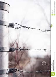 Three Barb Wires Attached To Metal Fence Post Stock Photo Image Of Fasten Loop 69861538