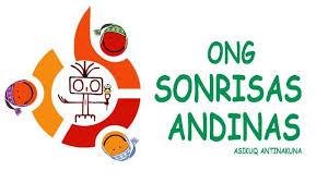 Bildergebnis für ONG sonrisas andinas