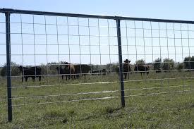 Max 50 Cattle Panels Ok Brand